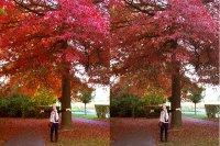 Ein kleiner Vergleich zwischen RGB und CMYK
